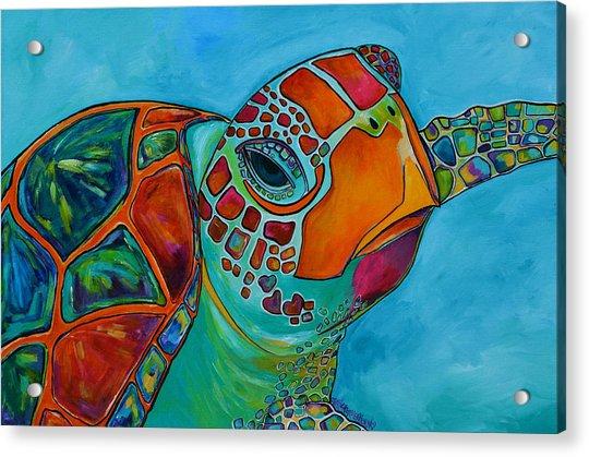 Seaglass Sea Turtle Acrylic Print