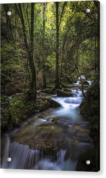 Sesin Stream Near Caaveiro Acrylic Print