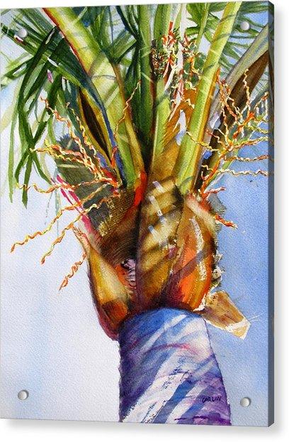 Shady Palm Tree Acrylic Print