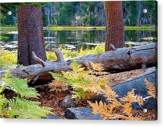 Siesta Lake Acrylic Print