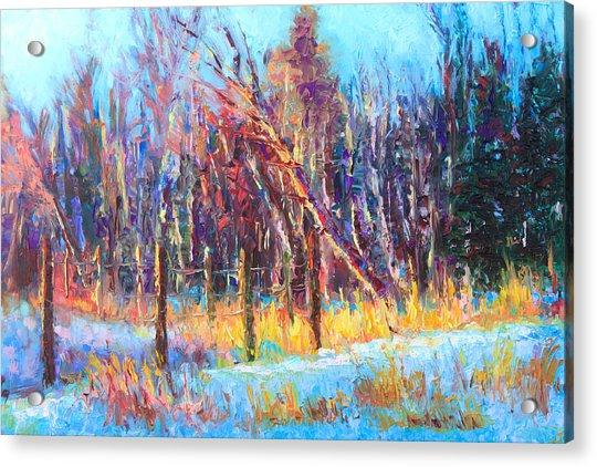 Acrylic Print featuring the painting Signs Of Spring - Trees And Snow Kissed By Spring Light by Talya Johnson