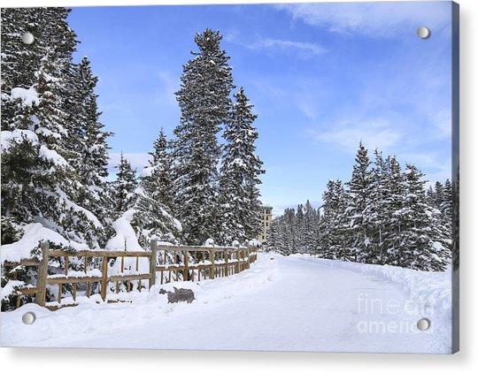 Snow Path Acrylic Print