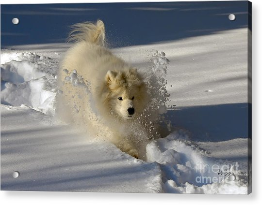 Snowplow Acrylic Print