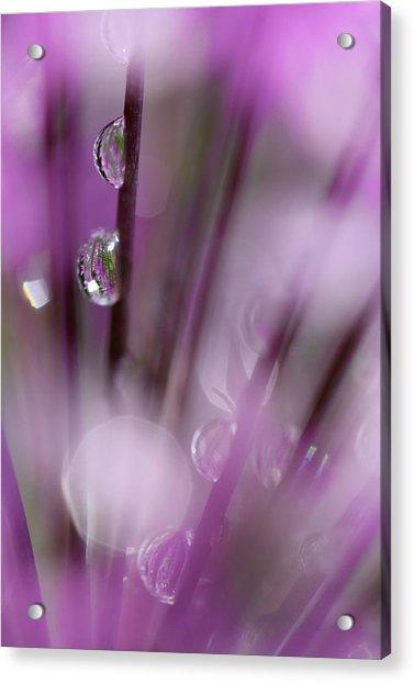 Soul In Rain Acrylic Print
