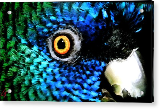 Acrylic Print featuring the painting Speaking Eye  by Colette V Hera  Guggenheim