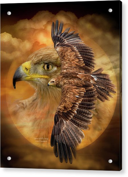 Spirit Of The Wind Acrylic Print