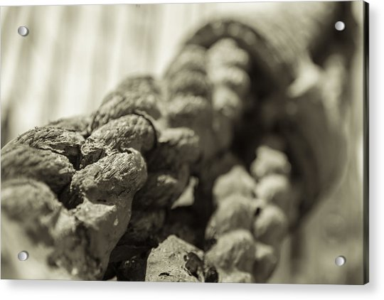 Spliced And Bound Black And White Sepia Acrylic Print