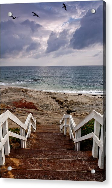 Steps And Pelicans Acrylic Print