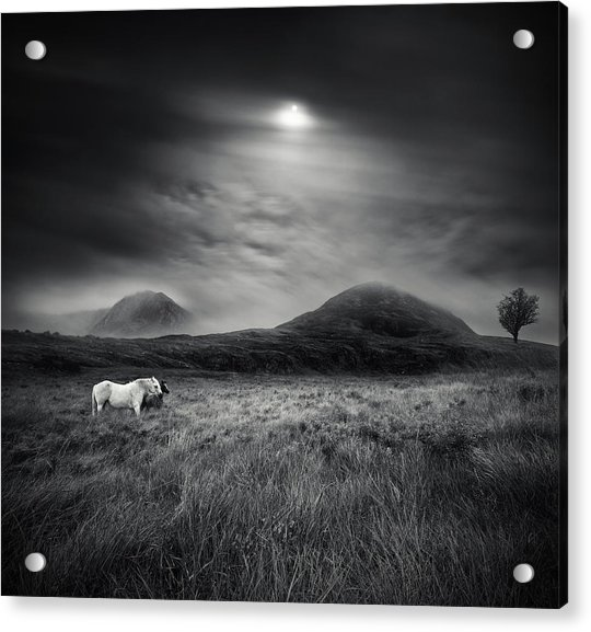 Strange Place To Be Acrylic Print by Martin Marcisovsky