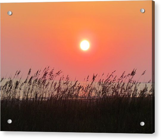 Acrylic Print featuring the photograph Sunset At The Beach by Cynthia Guinn