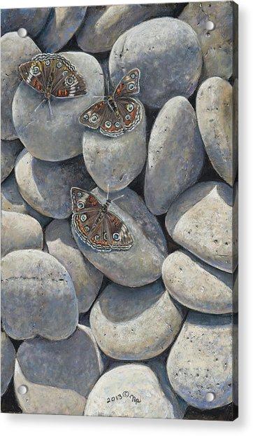 Sunshine And Butterflies Acrylic Print