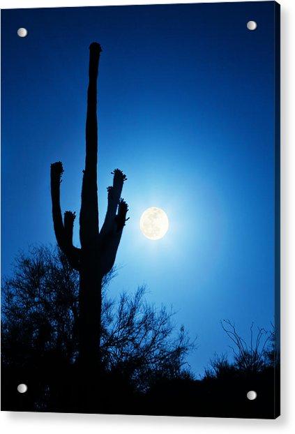 Super Full Moon With Saguaro Cactus In Phoenix Arizona Acrylic Print