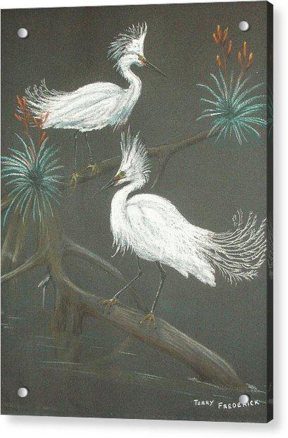 Swampbirds Acrylic Print