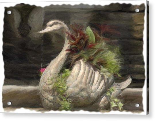 Swan With Beautiful Flowers Acrylic Print