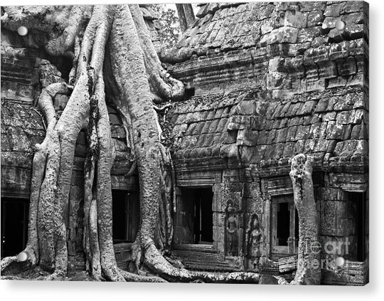 Ta Prohm Roots And Stone 01 Acrylic Print