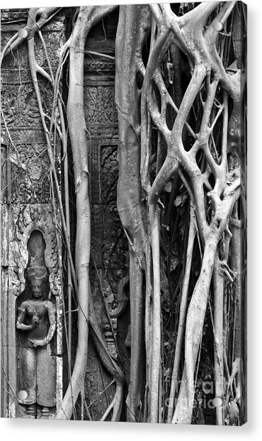 Ta Prohm Roots And Stone 09 Acrylic Print