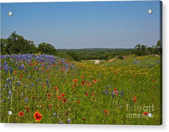 Texas Roadside Bling Acrylic Print