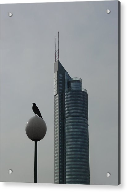 The Crow And The Milleniumtower In Winter Acrylic Print