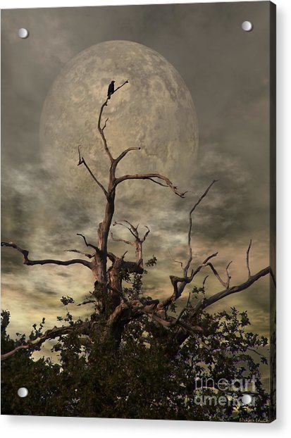 The Crow Tree Acrylic Print