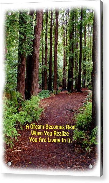 The Dream Is Real Again Acrylic Print