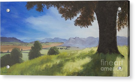Acrylic Print featuring the painting The Good Morning Tree by Dwayne Glapion