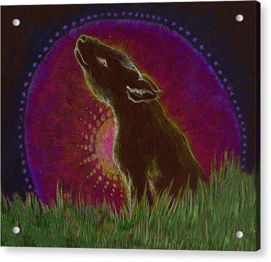The Heart Of An Animal Acrylic Print by Lydia Erickson