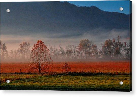 The Valley Acrylic Print