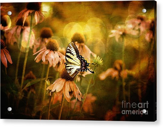 The Very Young At Heart Acrylic Print