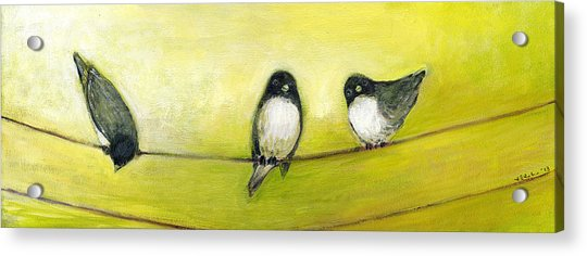 Three Birds On A Wire No 2 Acrylic Print