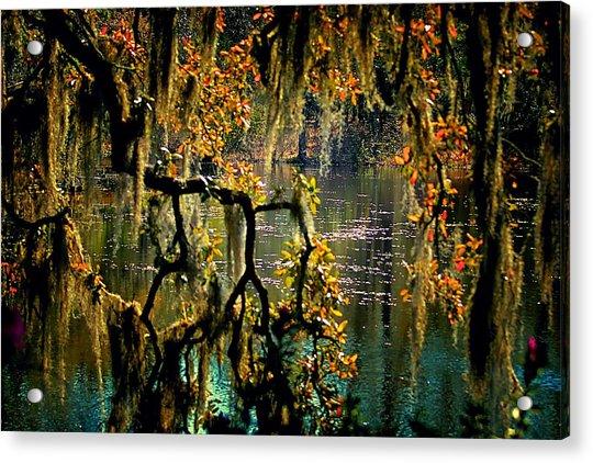 Through The Moss Acrylic Print