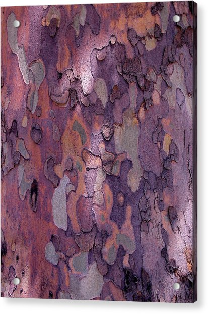 Acrylic Print featuring the photograph Tree Abstract by Rona Black