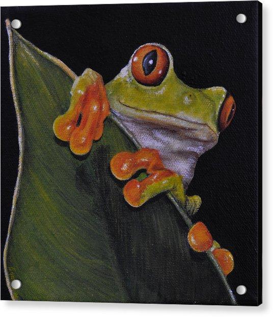 Tree Frog Peeking At You Acrylic Print