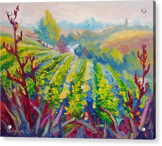 Vineyard Scene Oil Painting Acrylic Print
