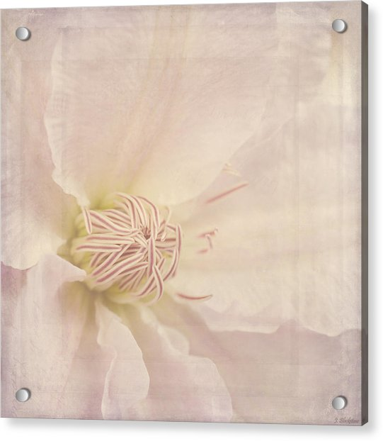 Vintage Flower Art - A Beautiful Place Acrylic Print