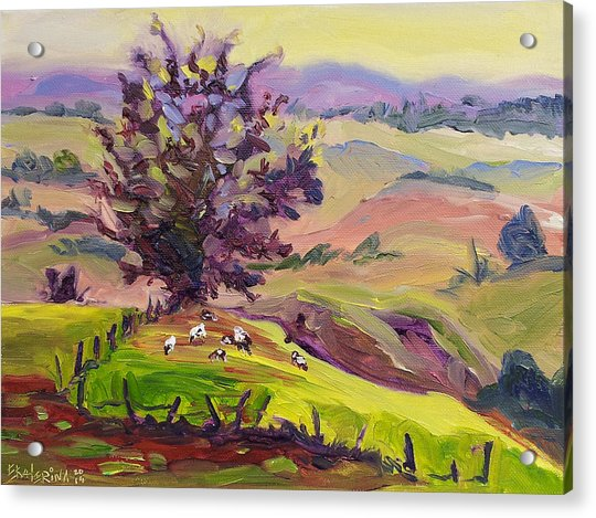 Violet Mountains At Sunrise Acrylic Print