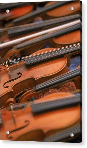 Violins Acrylic Print