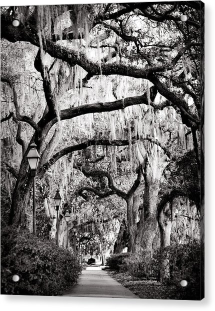 Walking In Forsyth Park In Black And White Acrylic Print