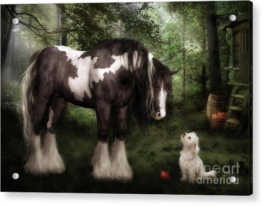 Want To Play Acrylic Print