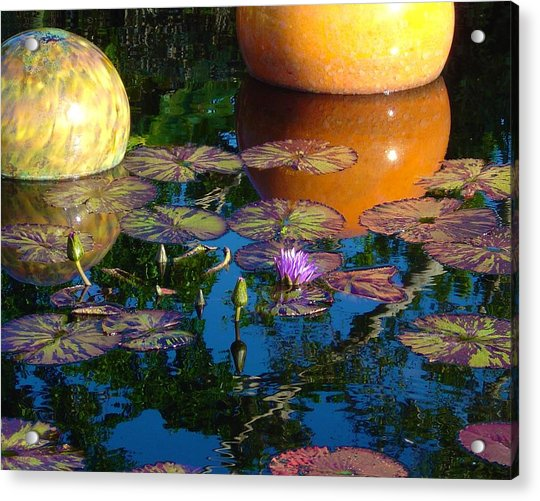 Waterlily Reflections Acrylic Print