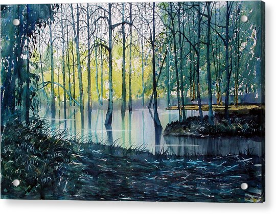Wetlands On Skipwith Common Acrylic Print