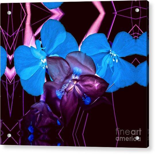 White To Blue Acrylic Print