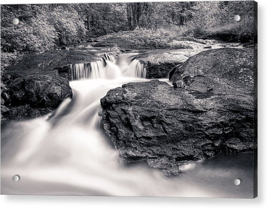 Wilderness River Acrylic Print