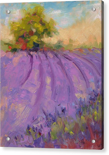 Acrylic Print featuring the painting Wildrain Lavender Farm by Talya Johnson