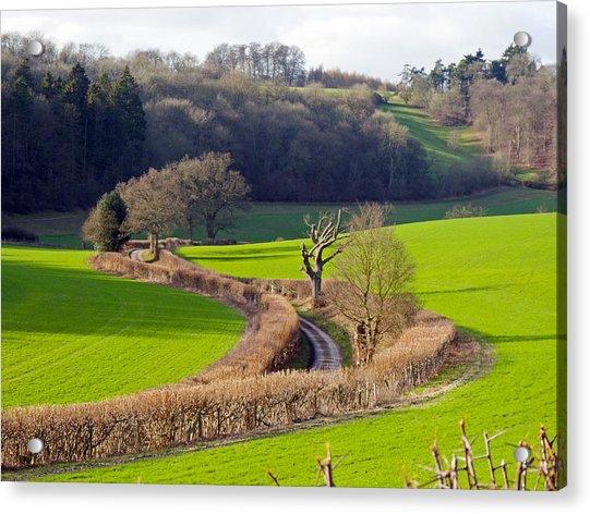 Winding Country Lane Acrylic Print