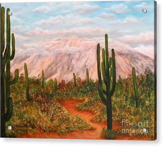 Winter Desert At Sunset Acrylic Print by Judy Filarecki