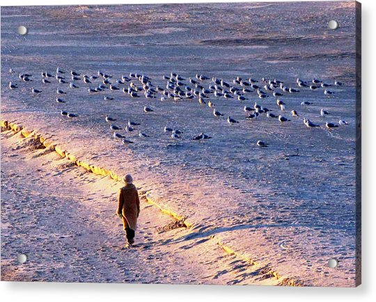 Acrylic Print featuring the photograph Winter Time At The Beach by Cynthia Guinn