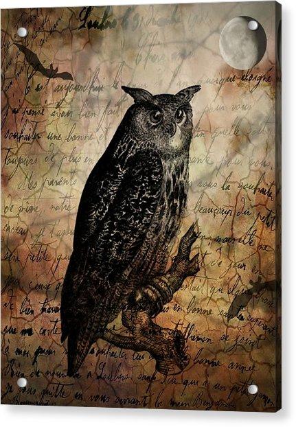 Wise Old Owl Acrylic Print