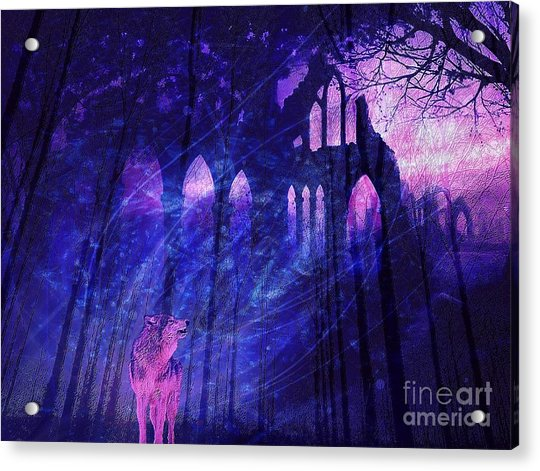Wolf And Magic Acrylic Print