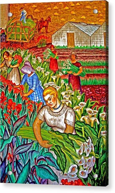 Women Gathering Flowers Acrylic Print