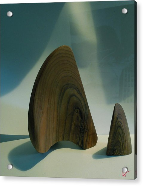 Acrylic Print featuring the photograph Wood Zen Harmony by Colette V Hera  Guggenheim